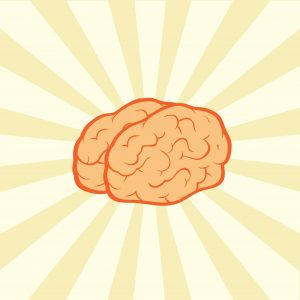 Brain Health and Vitamin B9