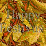 Happy Festivus! Do you Celebrate it?